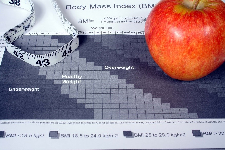 What Affects BMI?
