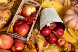 an assortment of fall produce on top of yellow leaves